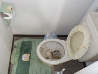 トイレのビファア