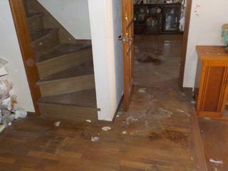 玄関と階段のアフター