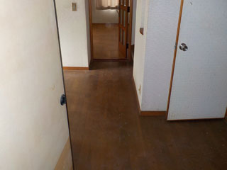 リビング側の玄関廊下のアフター